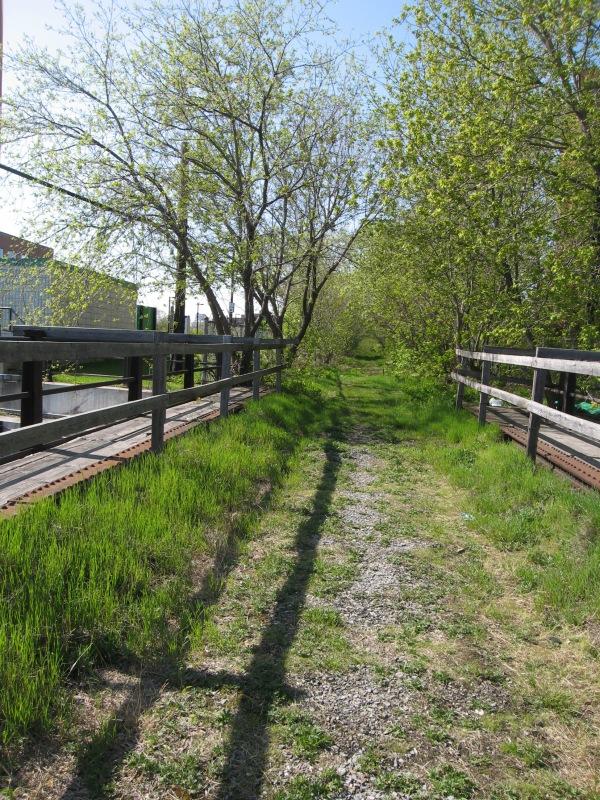 Bloor Bridge Before